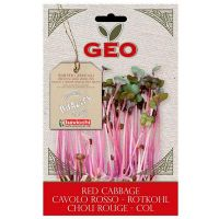 Lombarda red cabbage germinar geo - 12g