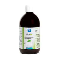 Ergysil - 500ml
