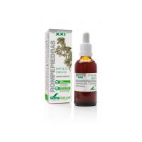 Rompepiedras extract - 50ml