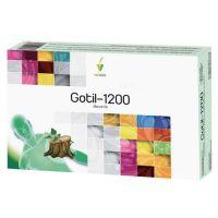 gotil/ 1200  20 amp