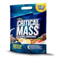 Critical Mass - 4,5 kg BigMan - 1