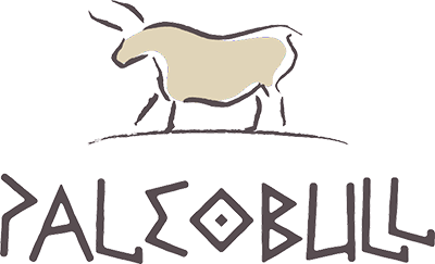 Paleo Bull